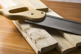 carcoma madera